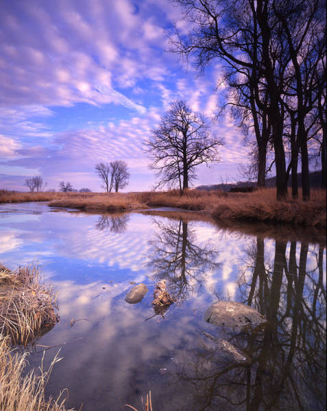 Photograph - Perfect Clouds by Ray Mathis
