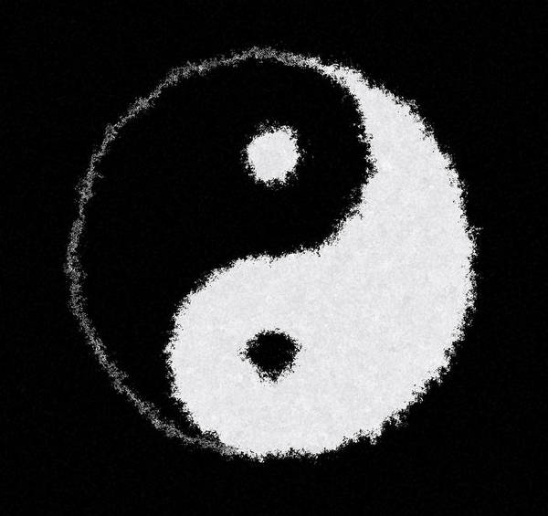 Wall Art - Digital Art - Perfect Imperfect Yin Yang by Daniel Hagerman