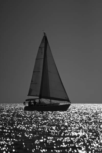 Photograph - Perfect Sailing by Amazing Jules