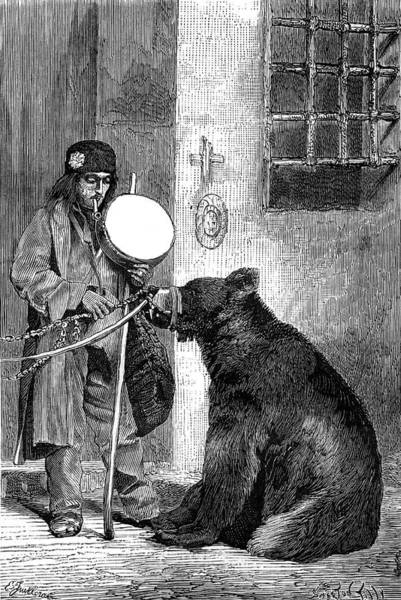 Wall Art - Drawing - Performing Bear With His Owner by Mary Evans Picture Library