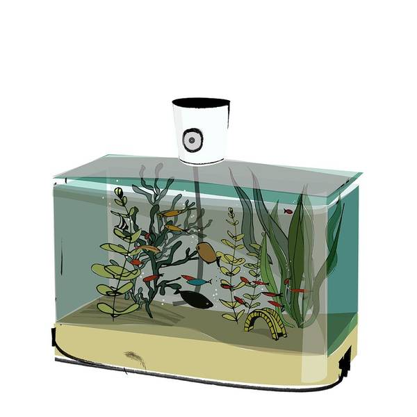 Fish Tank Photograph - Perfume Bottle Containing Fish by Sharpenson Ltd/science Photo Library