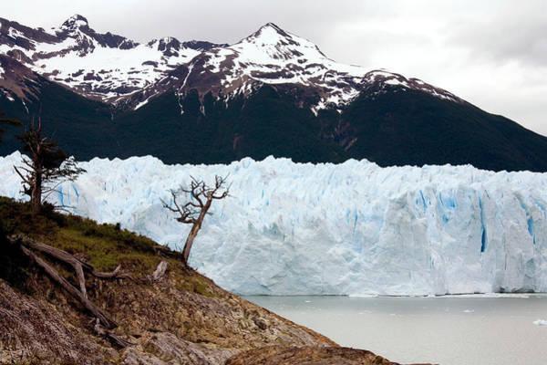Wall Art - Photograph - Perito Moreno Glacier by Steve Allen/science Photo Library