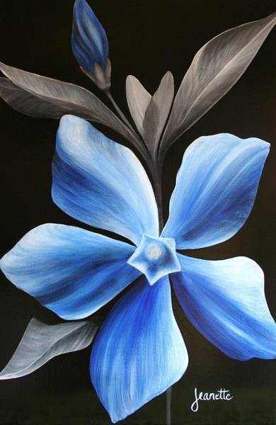 Painting - Periwinkle by Jeanette Fellows