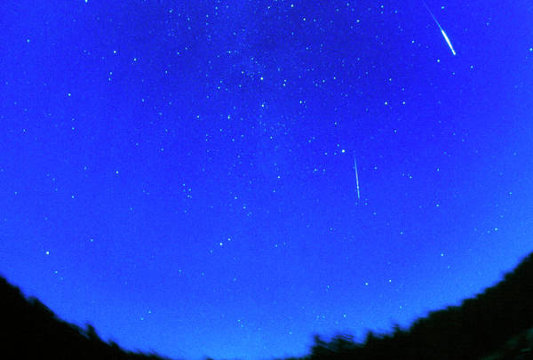 Perseid Wall Art - Photograph - Perseid Meteor Tracks by Pekka Parviainen/science Photo Library
