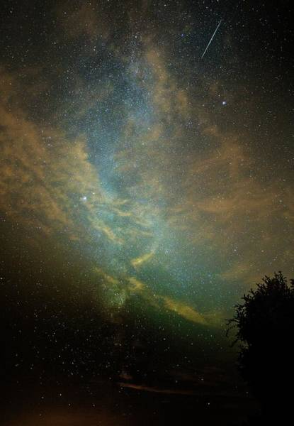 Perseid Wall Art - Photograph - Perseid Meteor Trail In The Night Sky by Chris Madeley