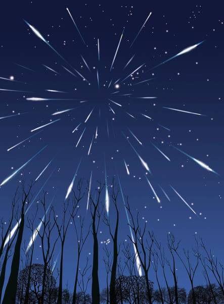 Perseid Wall Art - Photograph - Perseids Meteor Shower by Paul Wootton/science Photo Library