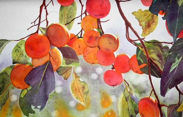 Persimmon Painting - Persimmon Tree by Sarah Bent