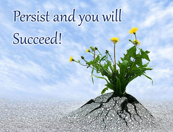 Photograph - Persist And You Will Succeed 1 by Dreamland Media