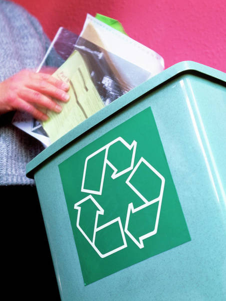 Wall Art - Photograph - Person Placing Paper In A Recycling Bin by Martin Bond/science Photo Library