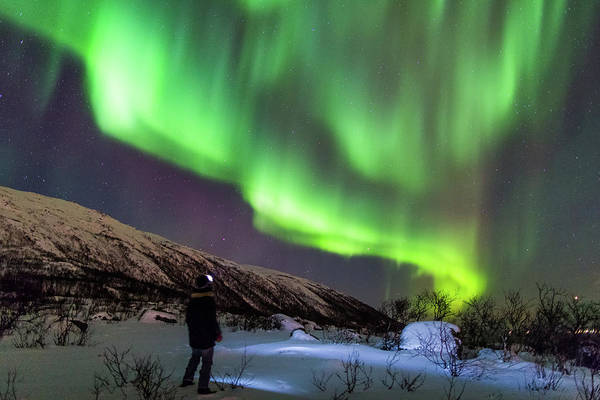 People Watching Photograph - Person Watching The Northern Lights by Daniel Osterkamp