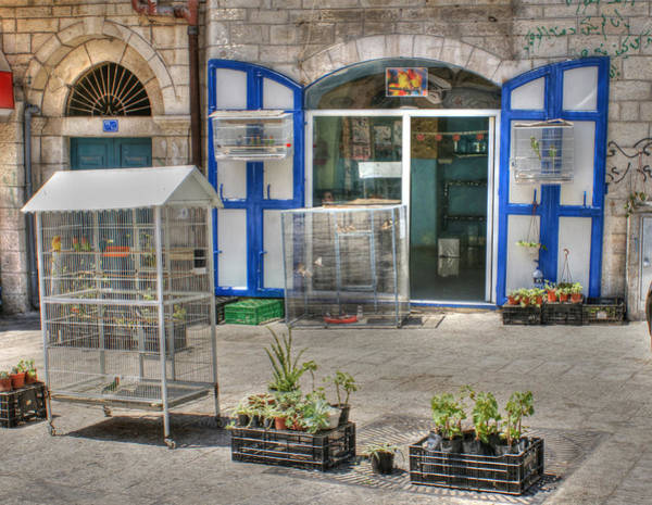 Photograph - Pet Store In Bethlehem by David Birchall