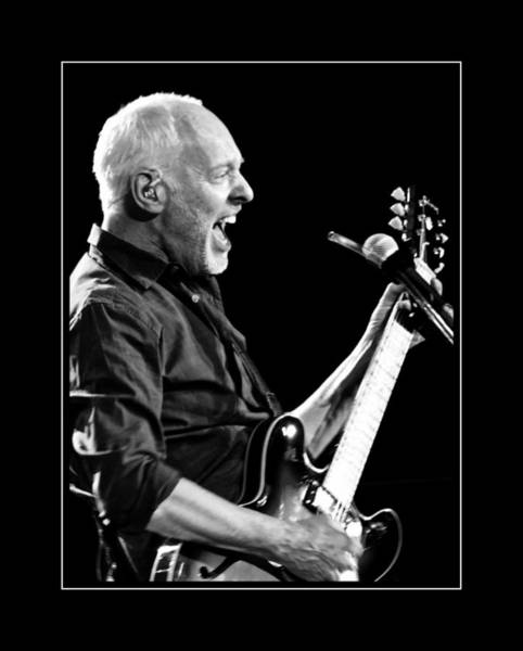 Photograph - Peter Frampton At The Guitar by Alice Gipson