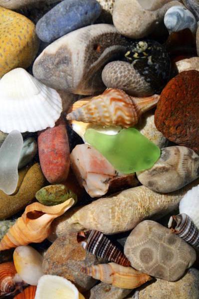 Photograph - Petoskey Stones L by Michelle Calkins