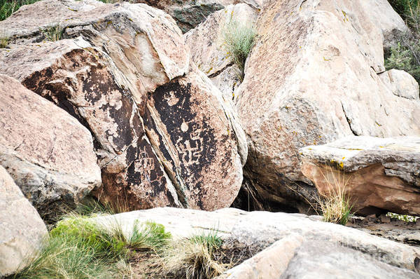 Photograph - Petroglyph by Cheryl McClure
