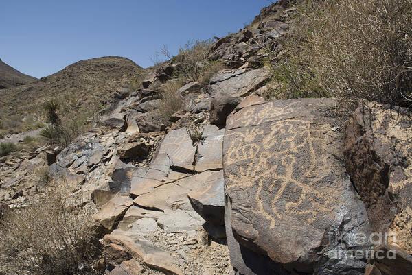 Photograph - Petroglyphs by Dan Suzio