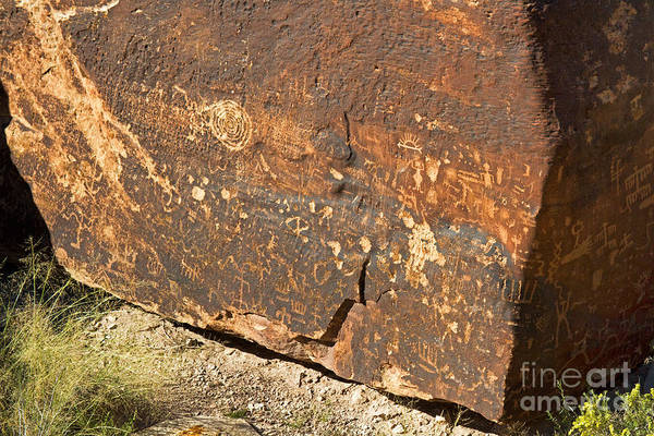 Photograph - Petroglyphs Newspaper Rock Petrified Forest National Park by Fred Stearns
