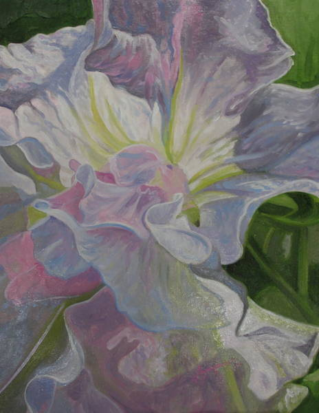 Painting - Petunia by Sherri Anderson