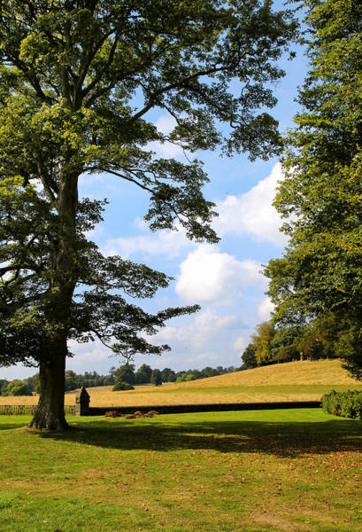 Photograph - Petworth Gardens By Mike-hope by Michael Hope