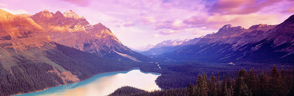 Peyto Lake Wall Art - Photograph - Peyto Lake, Alberta, Canada by Panoramic Images