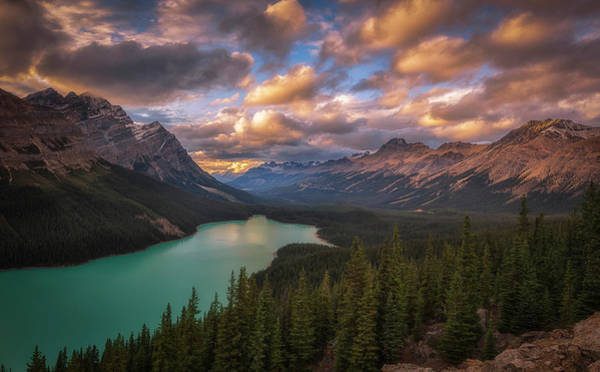 Rockies Wall Art - Photograph - Peyto Lake At Dusk by Michael Zheng