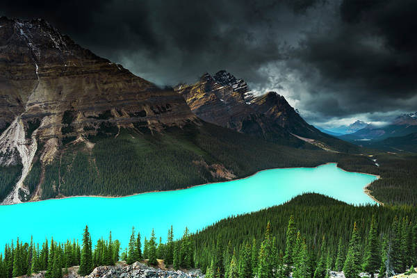 Peyto Lake Wall Art - Photograph - Peyto Lake, Banff, Alberta, Canada by Arnaudbertrande