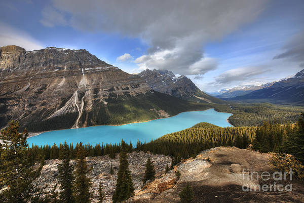 Peyto Lake Wall Art - Photograph - Peyto Lake Banff by Dan Jurak