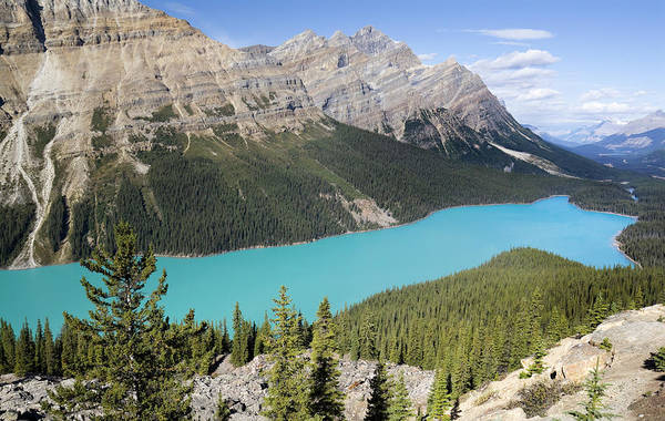 Peyto Lake Wall Art - Photograph - Peyto Lake by Elsvandergun