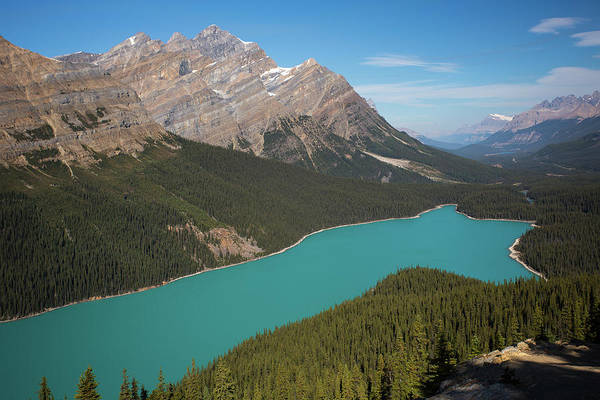 Peyto Lake Wall Art - Photograph - Peyto Lake by Ritu Vincent
