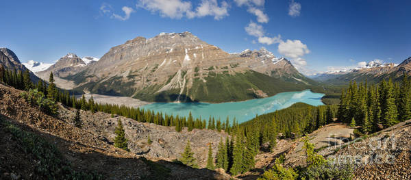 Photograph - Peyto Revisited by Charles Kozierok