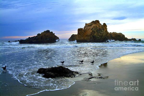 Photograph - Pfeiffer Beach Big Sur Twilight by Charlene Mitchell