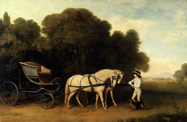 White Tiger Drawing - Phaeton With A Pair Of Cream Ponies And A Stable-lad by Litz Collection