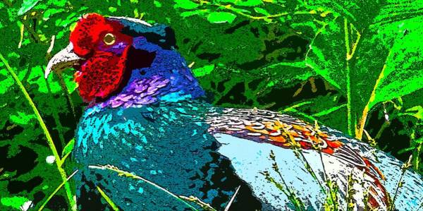 Pheasant Digital Art - Pheasant Digiartwork by Tim Ernst