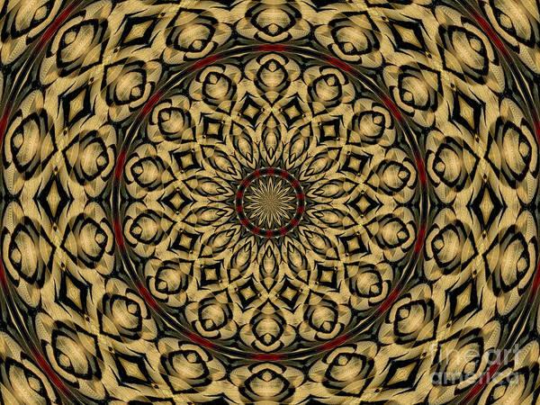 Photograph - Pheasant Feathers Kaleidoscope by Rose Santuci-Sofranko