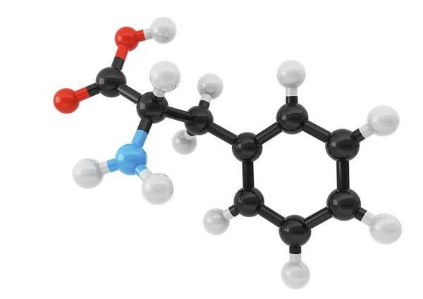 Cutout Wall Art - Photograph - Phenylalanine Amino Acid Molecule by Maurizio De Angelis/science Photo Library