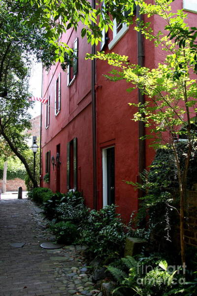 Wall Art - Photograph - Philadelphia Pathway In Charleston by Christiane Schulze Art And Photography