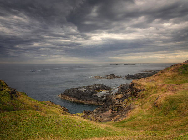 Photograph - Phillip Island by Kim Andelkovic