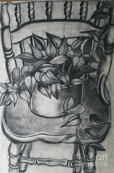 Wall Art - Drawing - Philodendron by Cecilia Stevens