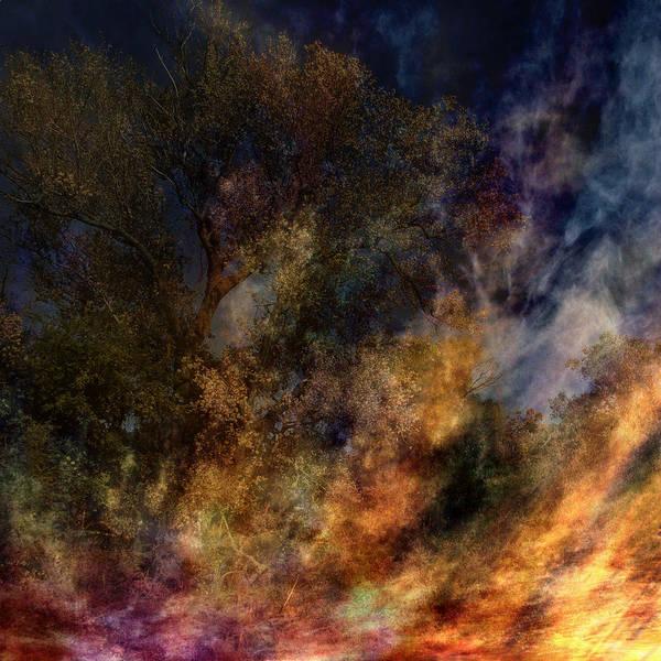 Digital Art - Phoenix Two by Randal Bruck