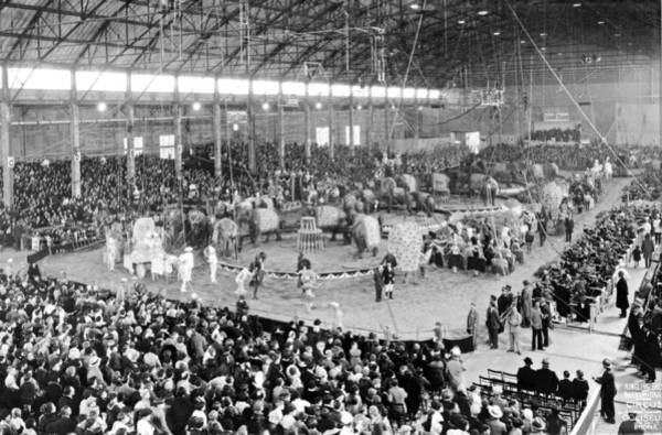 Coliseum Photograph - Photo Of A Five Ring Circus by Underwood Archives