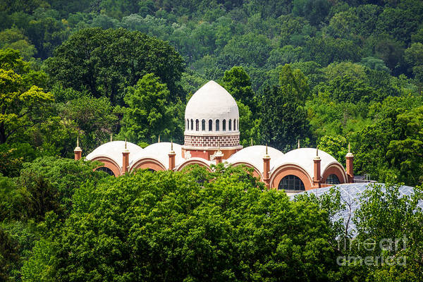 Roof Top Photograph - Photo Of Elephant House At Cincinnati Zoo by Paul Velgos