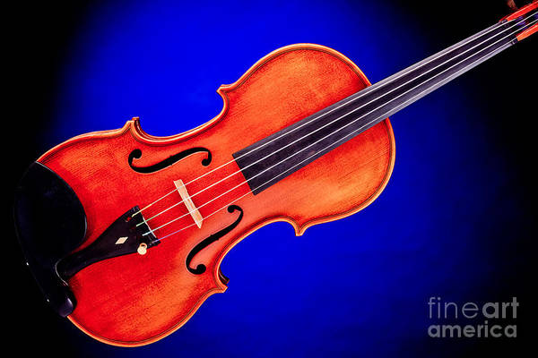 Photograph - Photograph Of A Complete Viola Violin In Color 3370.02 by M K Miller