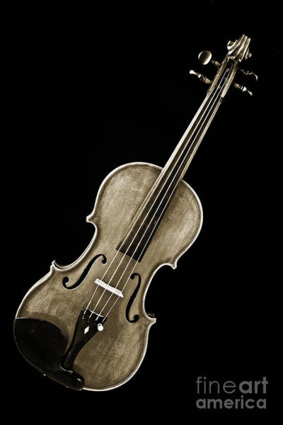 Photograph - Photograph Of A Complete Viola Violin In Sepia 3368.01 by M K Miller