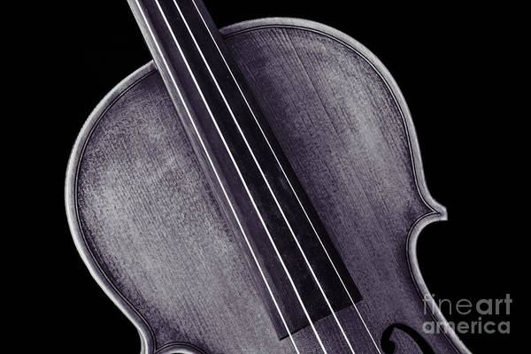 Photograph - Photograph Of A Upper Body Viola Violin In Sepia 3369.01 by M K Miller