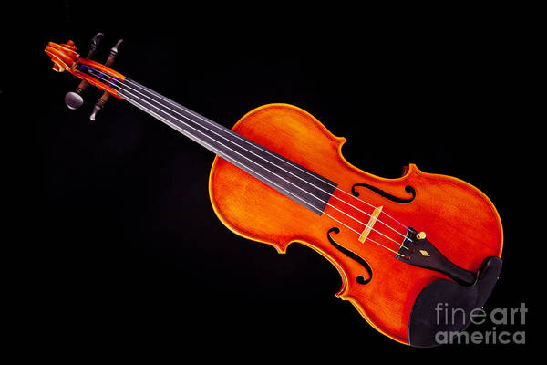 Photograph - Photograph Of A Viola Violin Antique In Color 3376.02 by M K Miller