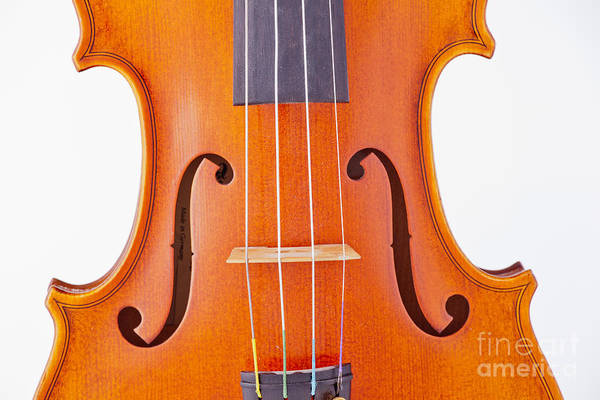 Photograph - Photograph Of A Viola Violin Middle In Color 3374.02 by M K Miller