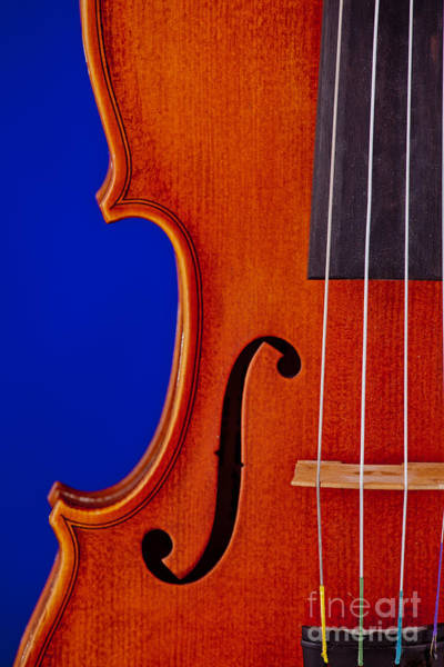 Photograph - Photograph Of A Viola Violin Side In Color 3372.02 by M K Miller