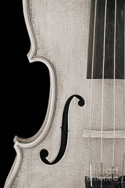 Photograph - Photograph Of A Viola Violin Side In Sepia 3372.01 by M K Miller