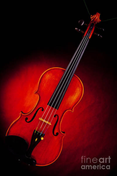 Photograph - Photograph Of A Viola Violin Spotlight In Color 3375.02 by M K Miller