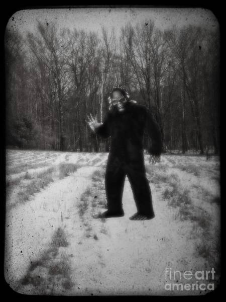 Wall Art - Photograph - Photographic Evidence Of Big Foot by Edward Fielding