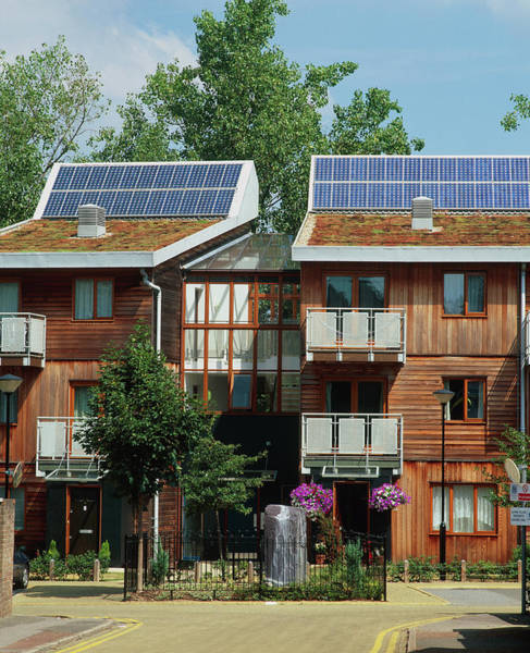 Housing Development Photograph - Photovoltaic Cells On Houses by Martin Bond/science Photo Library
